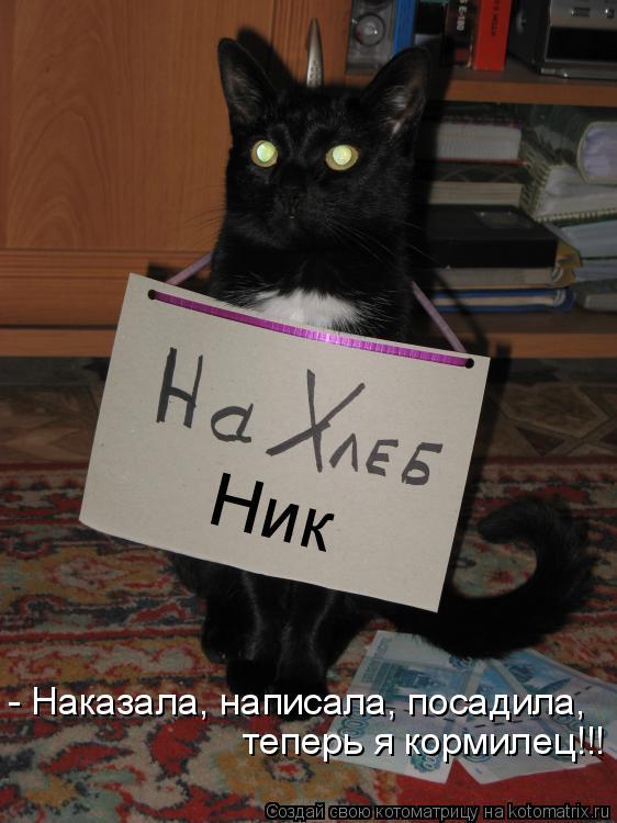 Котоматрица: Ник - Наказала, написала, посадила, теперь я кормилец!!!