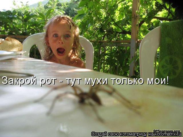 Котоматрица: Закрой рот - тут мухи только мои!