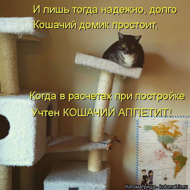 Котоматрица: И лишь тогда надежно, долго Кошачий домик простоит, Когда в расчетах при постройке  Учтен КОШАЧИЙ АППЕТИТ!
