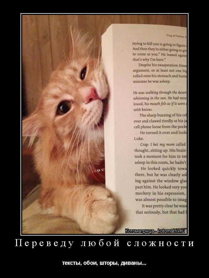 Котоматрица: Переведу любой сложности тексты, обои, шторы, диваны...