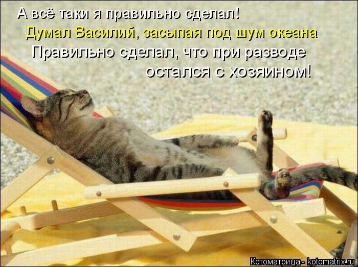 Котоматрица: А всё таки я правильно сделал! Думал Василий, засыпая под шум океана Правильно сделал, что при разводе  остался с хозяином!