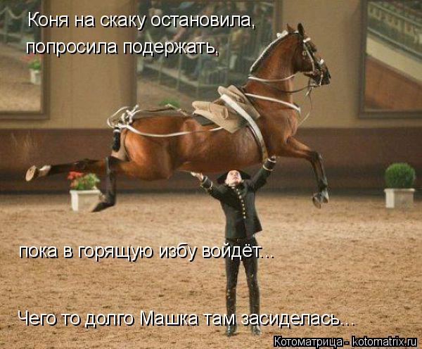 Котоматрица: Коня на скаку остановила, попросила подержать, пока в горящую избу войдёт... Чего то долго Машка там засиделась...