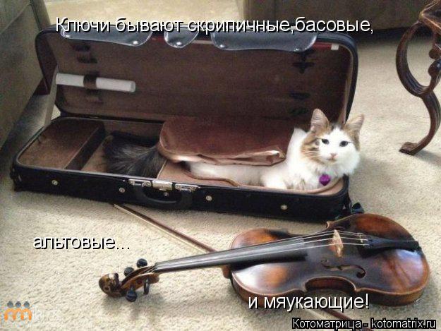 Котоматрица: Ключи бывают скрипичные,басовые, альтовые... и мяукающие!