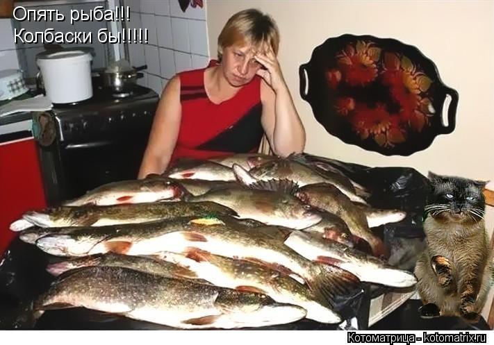 Котоматрица: Опять рыба!!! Колбаски бы!!!!!