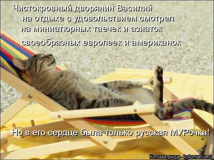 Котоматрица: Чистокровный дворянин Василий на отдыхе с удовольствием смотрел Но в его сердце была только русская МУРочка! своеобразных европеек и амер