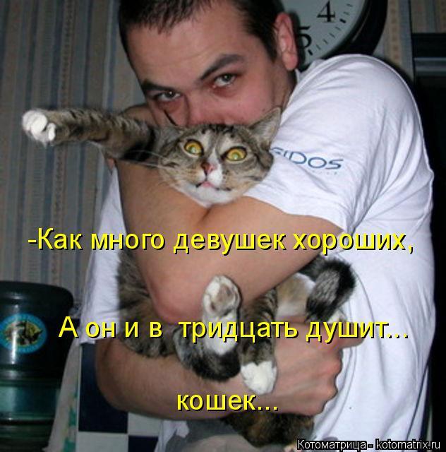 Котоматрица: -Как много девушек хороших,  А он и в  тридцать душит... кошек...
