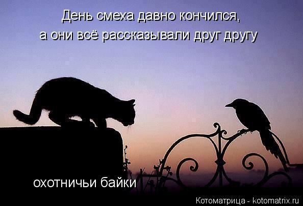 Котоматрица: День смеха давно кончился, а они всё рассказывали друг другу охотничьи байки