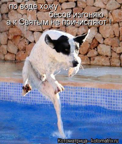 Котоматрица: по воде хожу , бесов изгоняю , а к Святым не причисляют !
