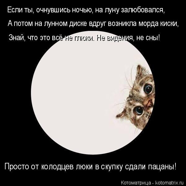 Котоматрица: Если ты, очнувшись ночью, на луну залюбовался, А потом на лунном диске вдруг возникла морда киски, Знай, что это всё не глюки. Не видения, не с