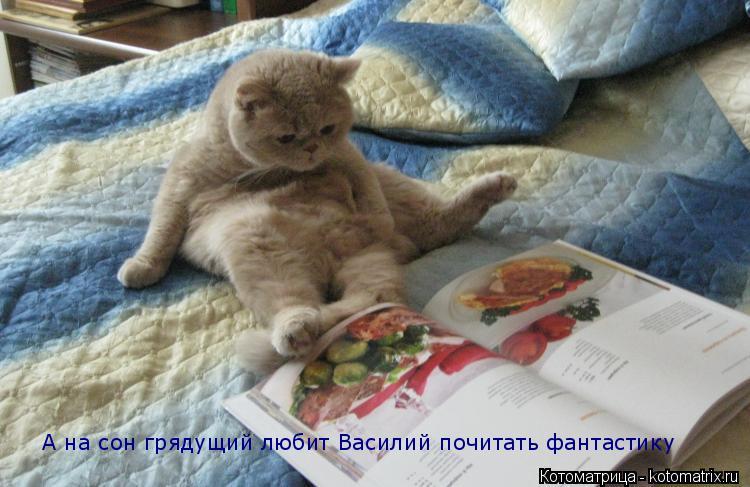 Котоматрица: А на сон грядущий любит Василий почитать фантастику