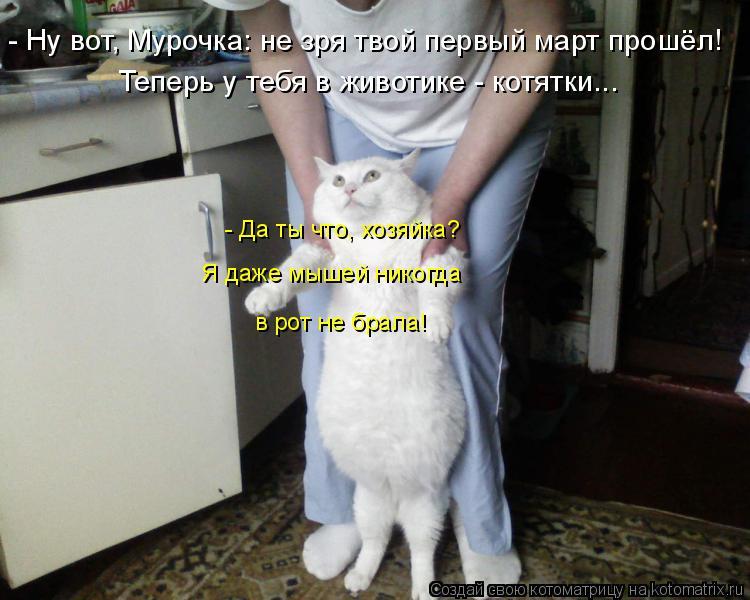 Котоматрица: Теперь у тебя в животике - котятки... - Ну вот, Мурочка: не зря твой первый март прошёл! в рот не брала! - Да ты что, хозяйка? Я даже мышей никогда