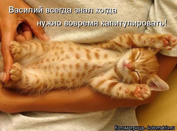 Котоматрица: Василий всегда знал когда  нужно вовремя капитулировать!