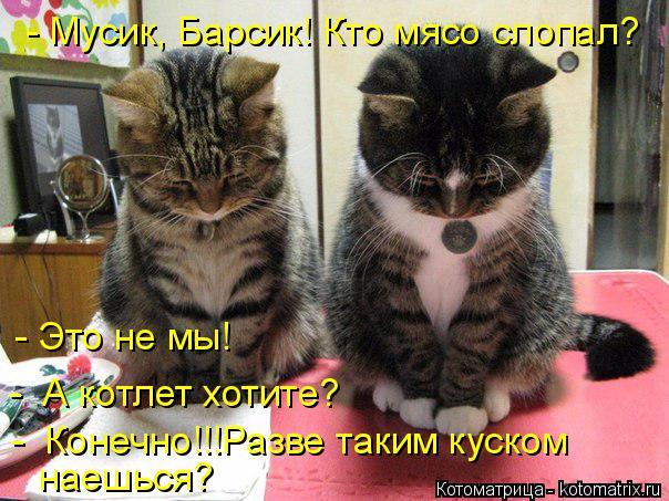 Котоматрица: - Мусик, Барсик! Кто мясо слопал? - Это не мы! -  А котлет хотите? -  Конечно!!!Разве таким куском наешься?