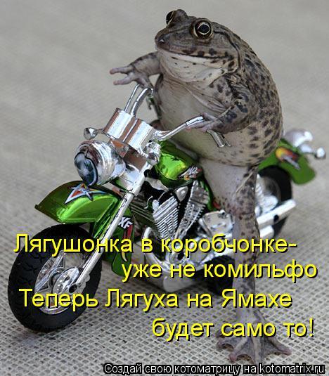 Котоматрица: Лягушонка в коробчонке- уже не комильфо Теперь Лягуха на Ямахе будет само то!