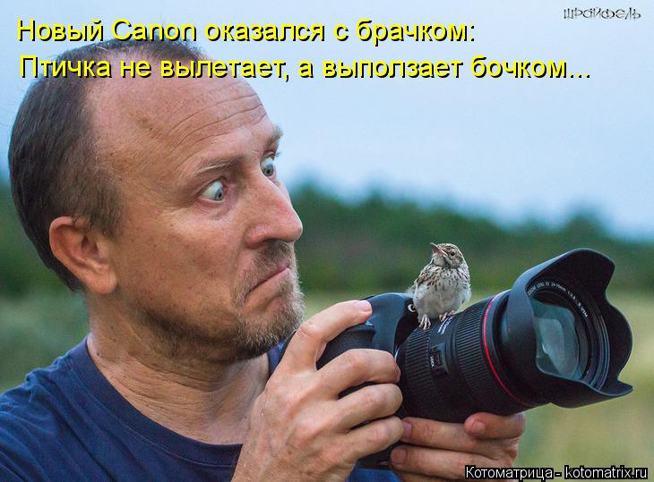 Котоматрица: Новый Canon оказался с брачком: Птичка не вылетает, а выползает бочком...