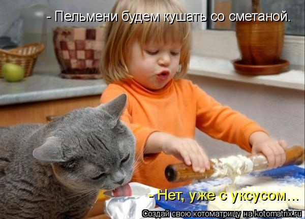 Котоматрица: - Пельмени будем кушать со сметаной. - Нет, уже с уксусом...