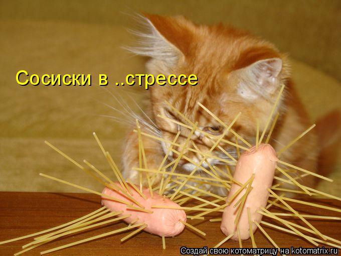 Котоматрица: Сосиски в ..стрессе
