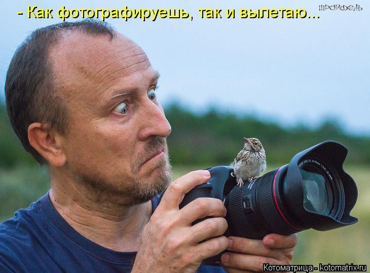 Котоматрица: - Как фотографируешь, так и вылетаю...