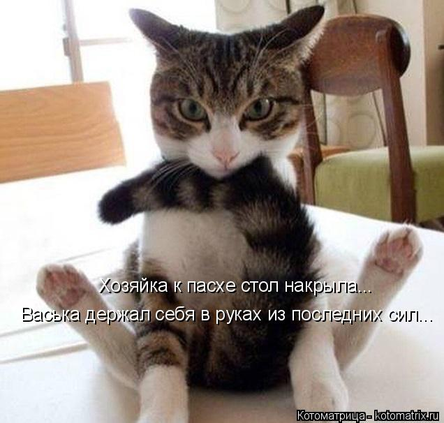 Котоматрица: Хозяйка к пасхе стол накрыла... Васька держал себя в руках из последних сил...