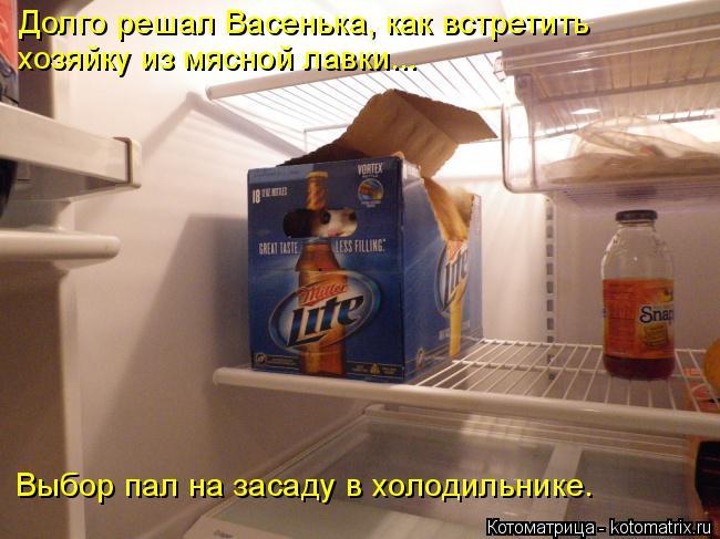Котоматрица: Долго решал Васенька, как встретить  хозяйку из мясной лавки... Выбор пал на засаду в холодильнике.