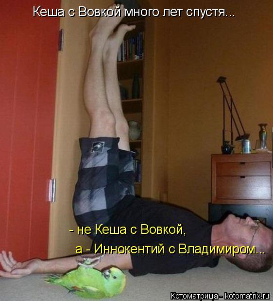 Котоматрица: Кеша с Вовкой много лет спустя... - не Кеша с Вовкой, а - Иннокентий с Владимиром...