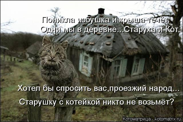 Котоматрица: Хотел бы спросить вас,проезжий народ... Старушку с котейкой никто не возьмёт? Одни мы в деревне...Старуха и Кот. Поникла избушка и крыша течёт.