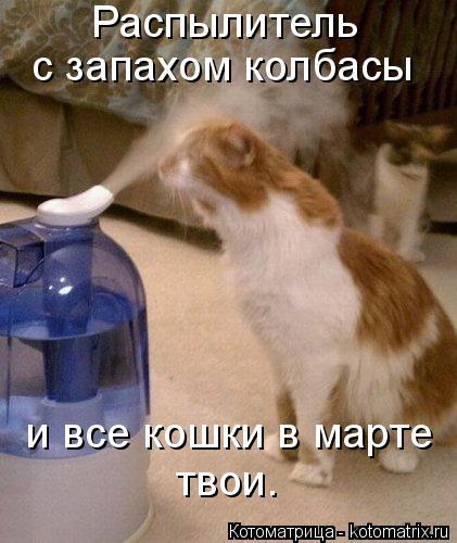 Котоматрица: Распылитель  с запахом колбасы и все кошки в марте твои.