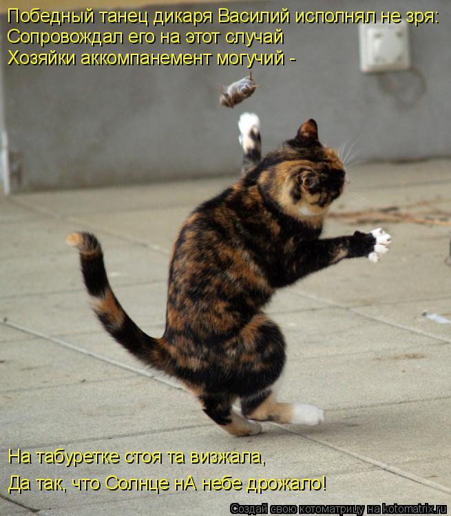 Котоматрица: Победный танец дикаря Василий исполнял не зря: Сопровождал его на этот случай Хозяйки аккомпанемент могучий - На табуретке стоя та визжала,
