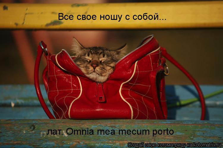Котоматрица: Все свое ношу с собой... лат. Omnia mea mecum porto