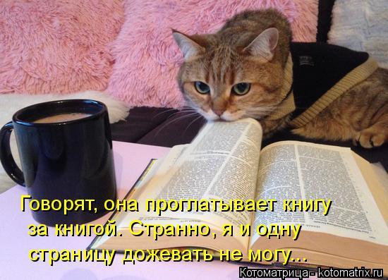 Котоматрица: Говорят, она проглатывает книгу за книгой. Странно, я и одну страницу дожевать не могу...