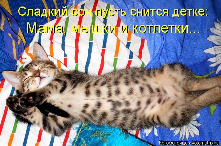 Котоматрица: Сладкий сон пусть снится детке: Мама, мышки и котлетки...