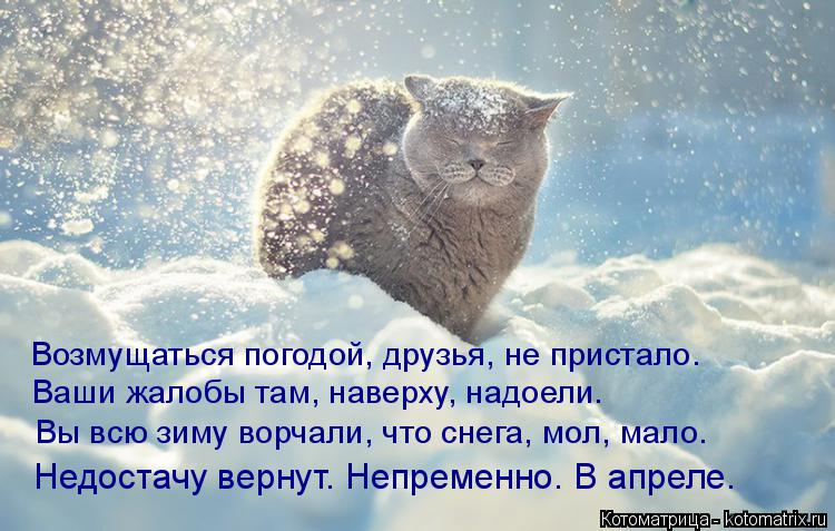 Котоматрица: Возмущаться погодой, друзья, не пристало. Ваши жалобы там, наверху, надоели. Вы всю зиму ворчали, что снега, мол, мало. Недостачу вернут. Непре