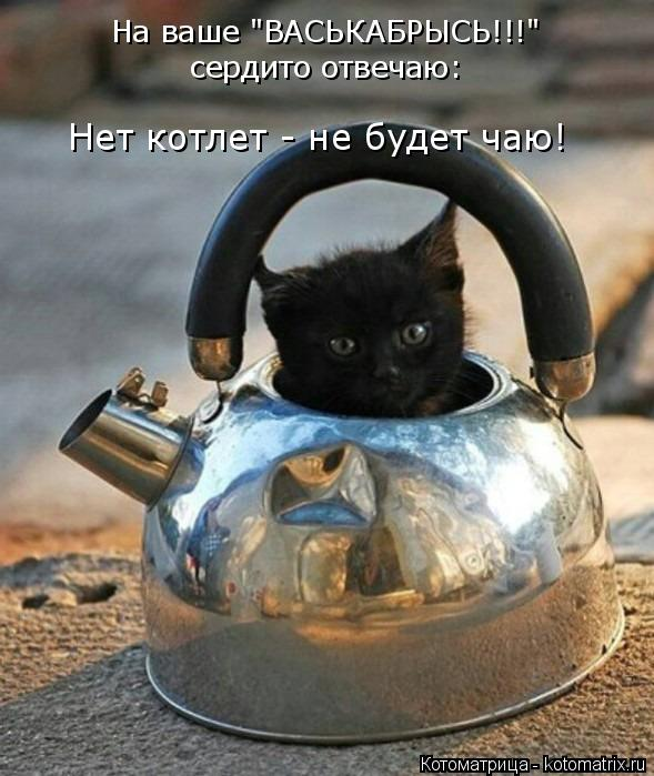 """Котоматрица: На ваше """"ВАСЬКАБРЫСЬ!!!"""" сердито отвечаю: Нет котлет - не будет чаю!"""