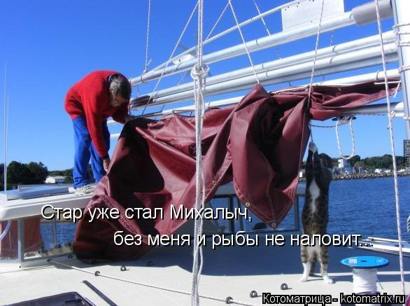 Котоматрица: Стар уже стал Михалыч, без меня и рыбы не наловит...