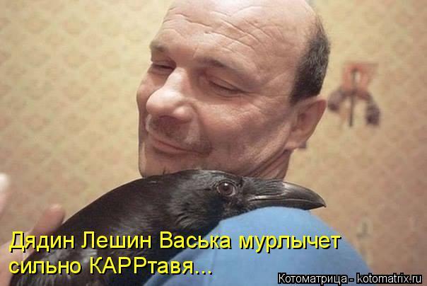 Котоматрица: Дядин Лешин Васька мурлычет сильно КАРРтавя...
