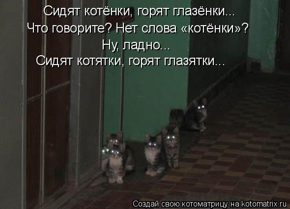 Котоматрица: Сидят котёнки, горят глазёнки... Что говорите? Нет слова «котёнки»? Ну, ладно... Сидят котятки, горят глазятки...