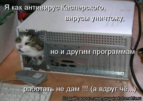Котоматрица: Я как антивирус Касперского, вирусы уничтожу, но и другим программам  работать не дам !!! (а вдруг чё...)