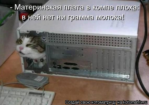Котоматрица: - Материнская плата в компе плоха: в ней нет ни грамма молока!