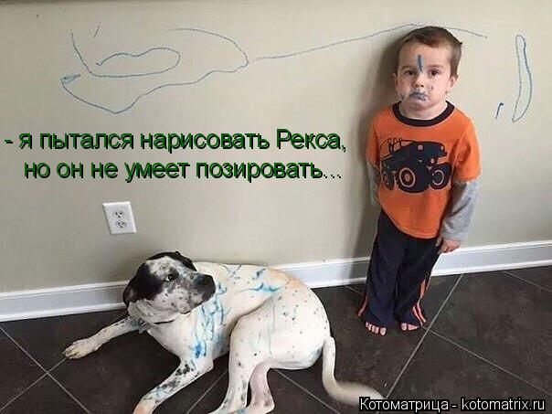 Котоматрица: - я пытался нарисовать Рекса,  но он не умеет позировать...