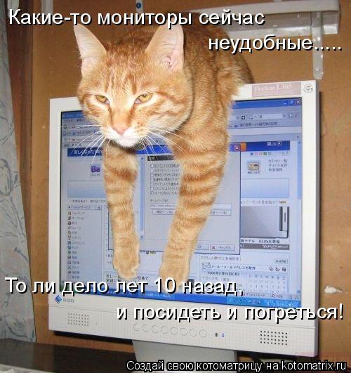 Котоматрица: Какие-то мониторы сейчас неудобные..... То ли дело лет 10 назад, и посидеть и погреться!