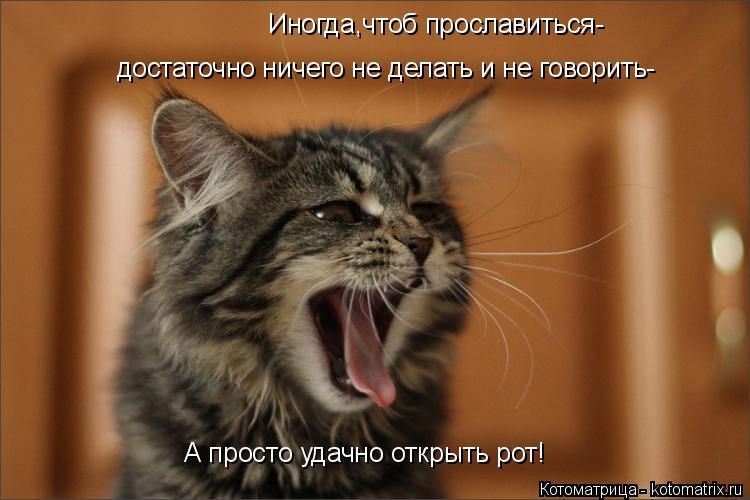 Котоматрица: Иногда,чтоб прославиться- достаточно ничего не делать и не говорить- А просто удачно открыть рот!