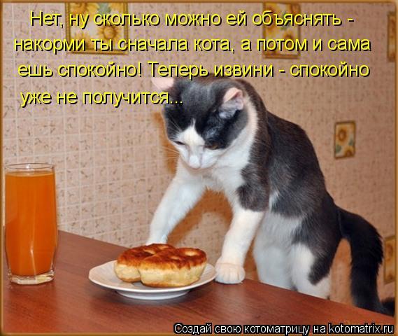 Котоматрица: Нет, ну сколько можно ей объяснять -  накорми ты сначала кота, а потом и сама  ешь спокойно! Теперь извини - спокойно уже не получится...