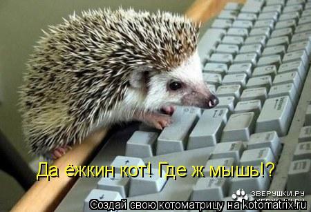 Котоматрица: Да ёжкин кот! Где ж мышь!?