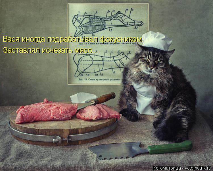 Котоматрица: Вася иногда подрабатывал фокусником. Заставлял исчезать мясо...