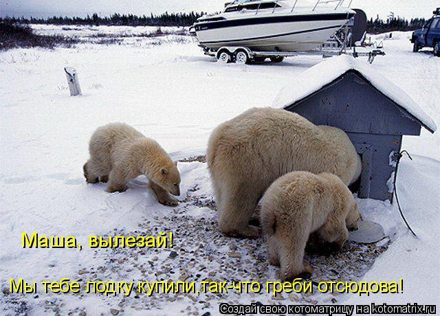 Котоматрица: Маша, вылезай! Мы тебе лодку купили,так-что греби отсюдова!