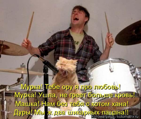 Котоматрица: Мурка! Тебе ору я про любовь! Мурка! Ушла, не греет больше кровь! Машка! Нам без тебя с котом хана! Дуры! Мы ж два шикарных пацана!!
