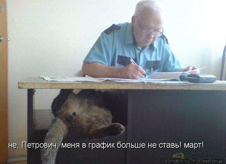 Котоматрица: не, Петрович, меня в график больше не ставь! март!