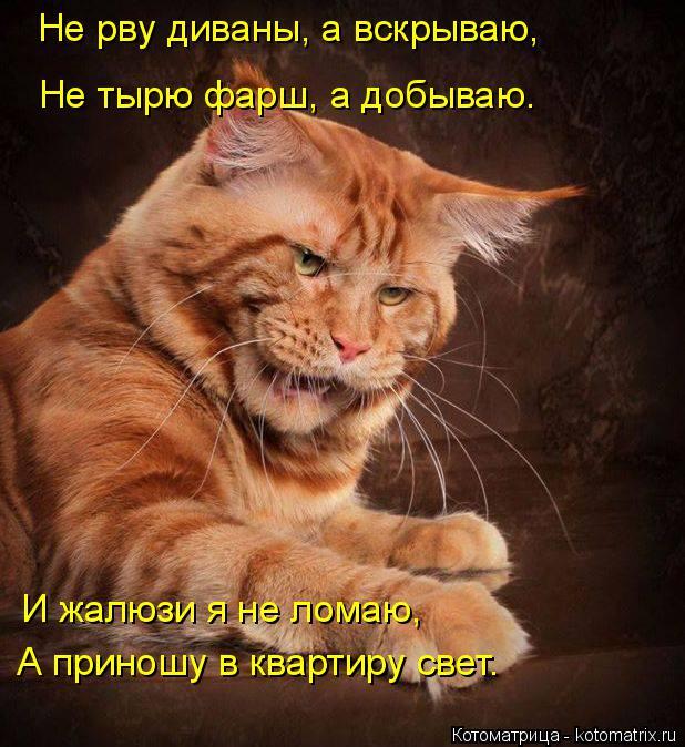 Котоматрица: Не рву диваны, а вскрываю, Не тырю фарш, а добываю. И жалюзи я не ломаю, А приношу в квартиру свет.