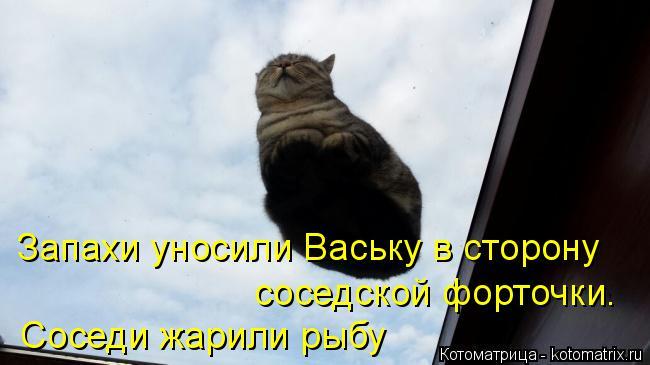 Котоматрица: Запахи уносили Ваську в сторону  соседской форточки. Соседи жарили рыбу