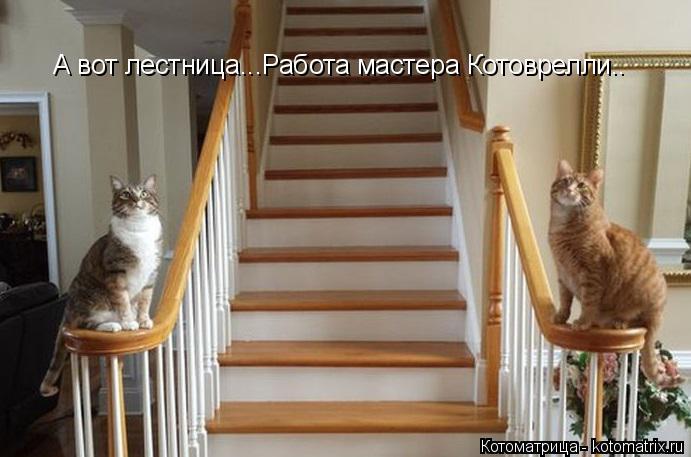 Котоматрица: А вот лестница...Работа мастера Котоврелли..